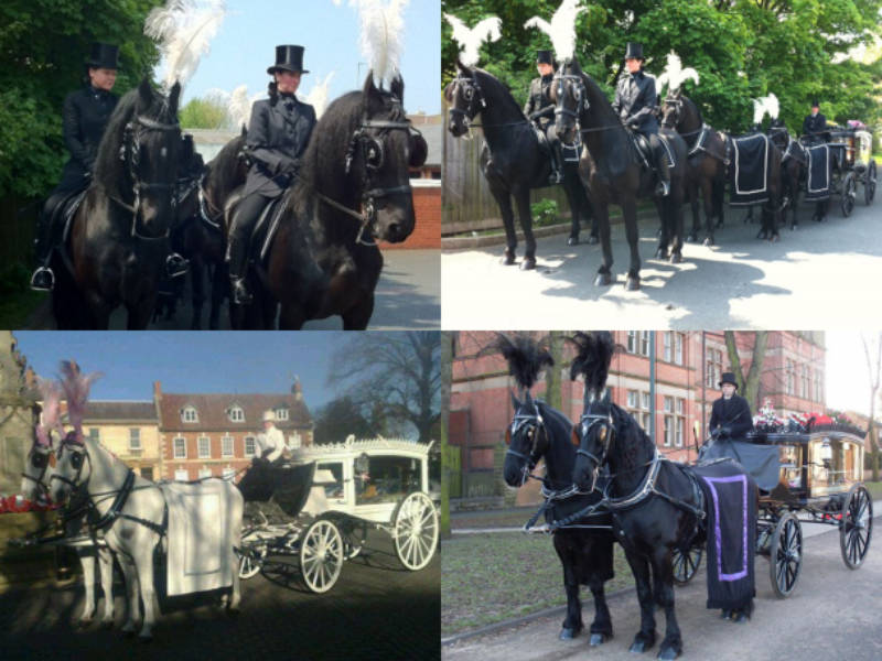 horse-drawn hearse funeral